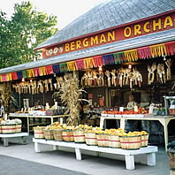 photo of Bergman Orchards